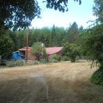 Reiki Ranch School grounds